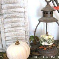 A Fall Fantle