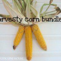 Harvesty Corn Bundles