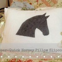 That Horsey Pillow I've been talking about making forever.