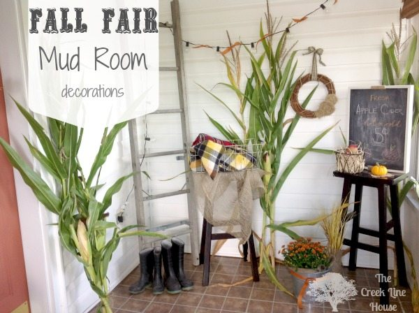 The Fall Fair Is A Place Where Flashy Lights Mix Perfectly With Corn Mazes,  Food Stands, Displays Of Pumpkins And Mums, And Plenty Of Live Stock. Part 85