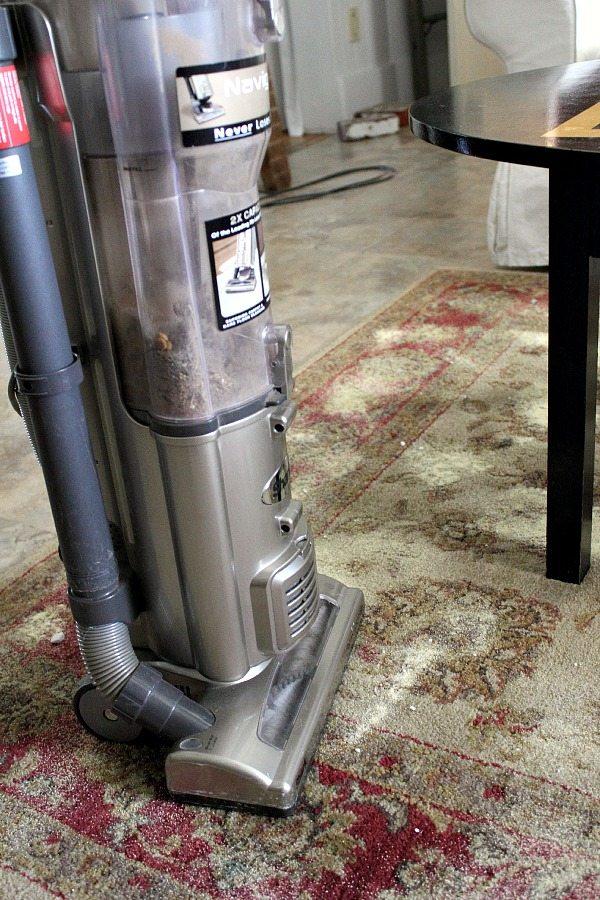 Homemade Carpet Cleaner And Deodorizer Diy The Creek