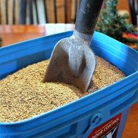 10 Clever Alternative Uses for Cat Litter!
