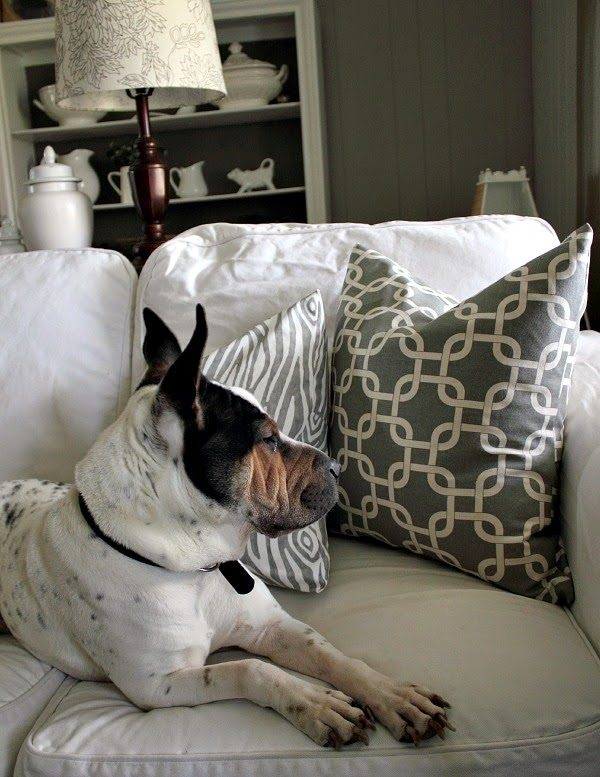 The Minute DIY Pillow Cover The Creek Line House - Bold diy circus animal cookie pillows