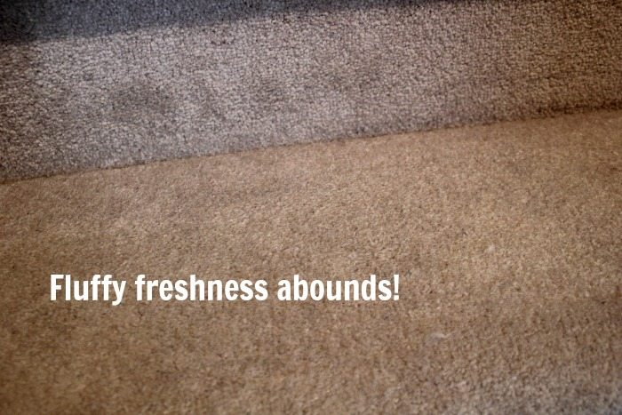 My carpet after a good DIY carpet cleaning session! No more stubborn carpet stains!