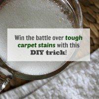 Homemade DIY Cleaner for Stubborn Carpet Stains