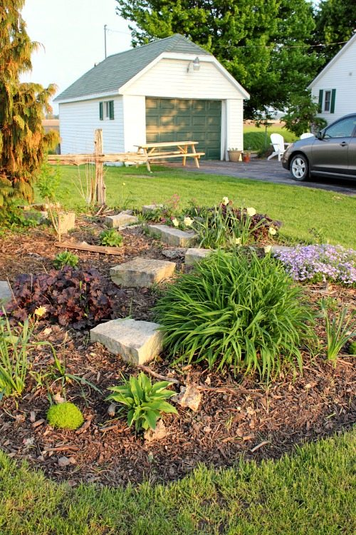Low-maintenance perennial garden on a budget!
