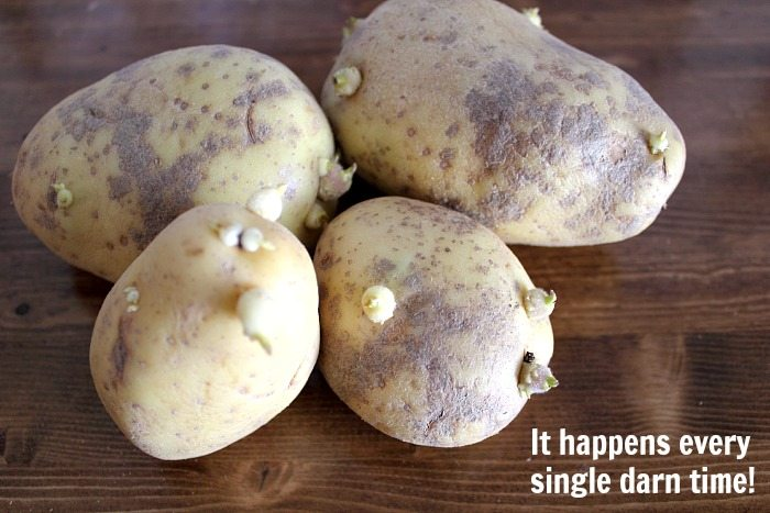 Keep potatoes from sprouting so quickly with this easy trick! You'll be amazed at how well this easy tip works! Yay for science!