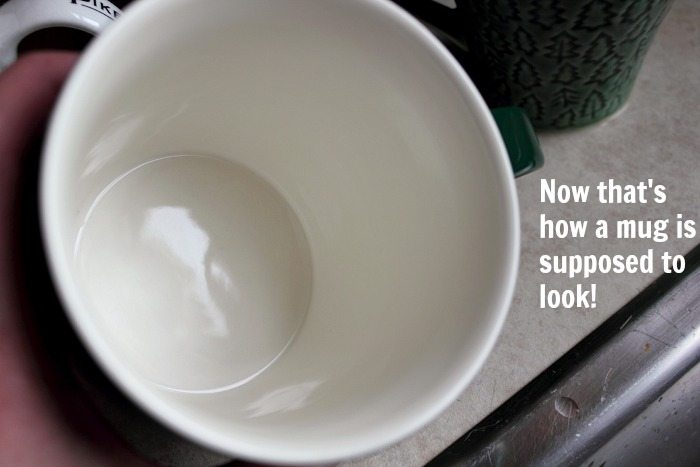 Coffee Mug To Go >> How to Remove Coffee and Tea Stains from mugs Naturally! | The Creek Line House