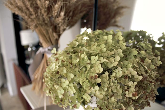 Get perfectly-dried hydrangea blooms every time with this easy step-by-step guide on how to dry hydrangeas. It's easier than you think.