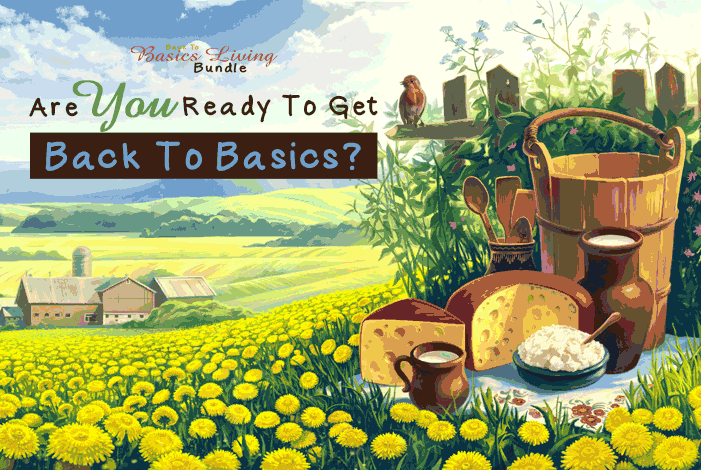 """Tips and tricks for getting started towards living your own """"Back to Basics"""" lifestyle!"""
