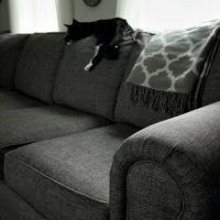 How to Properly Clean Upholstered Furniture