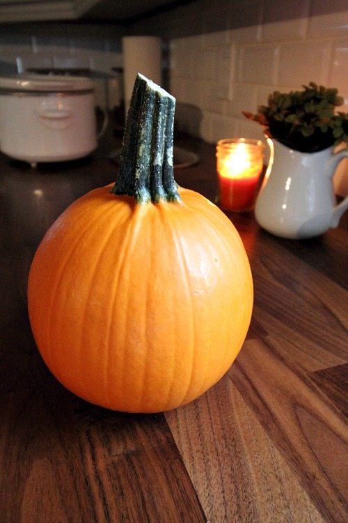 Make your own pumpkin puree in the crock-pot! Follow this quick and simple recipe and enjoy fresher, better tasting pumpkin-y treats this fall.