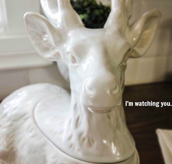 Christmas decorating ideas for the kitchen! Lots of easy, do-able tips!