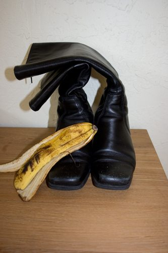 Feasibility Of Making a Shoe Shine From a Banana Essay Sample