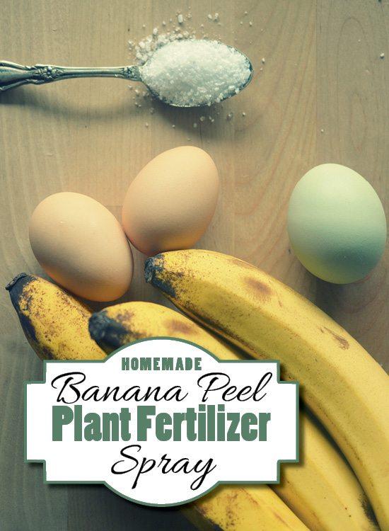 10-plant-fertilizer