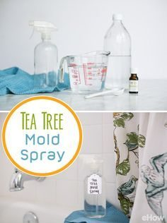 Uses for Tea Tree oil in your home! So many great ones in here that will definitely have you wanting to keep this oil on hand at all times!
