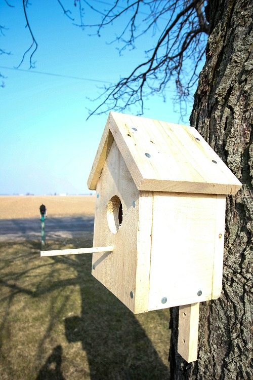 Build your own classic birdhouse with these free printable plans!