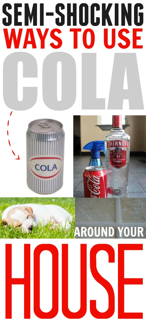 Cola may not be the healthiest thing in your refrigerator but did you know it's actually one of the most useful?  Here is an amazing collection of incredibly interesting uses for cola that you can use in your home.