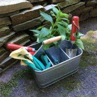 Early Spring Gardening Essentials