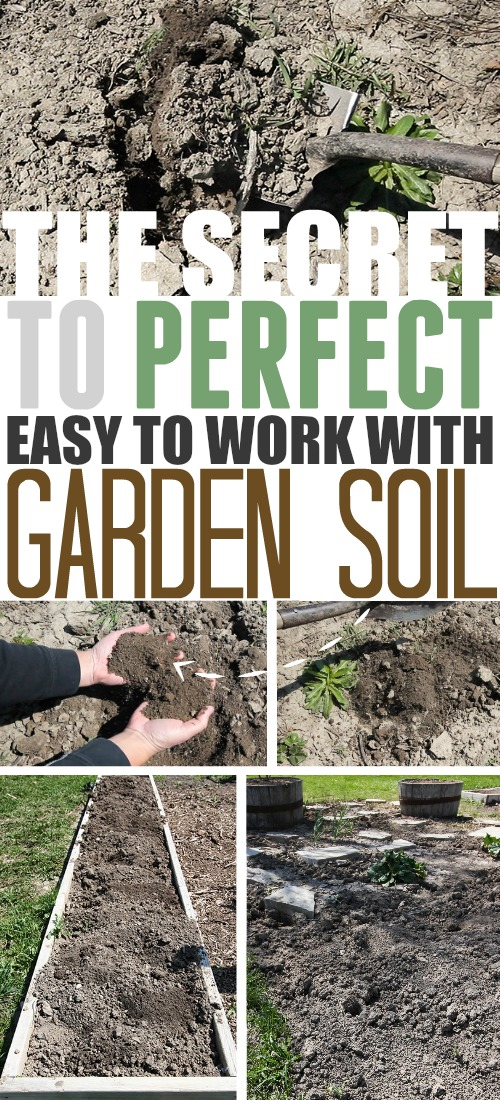 For those struggling with rock hard soil every spring, the secret to perfect, easy to work with garden soil is much easier than you think.  With this trick you'll be able to make garden soil that is soft, workable and weed-free as soon as you're ready to plant.