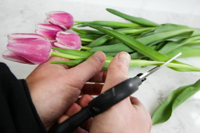 How To Make Cut Flowers Last Longer The Creek Line House