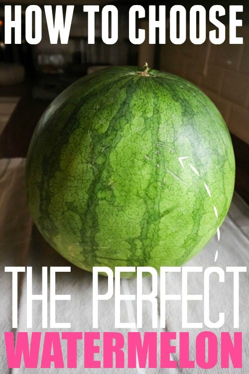 How To Choose The Style Of The: How To Choose The Perfect Watermelon