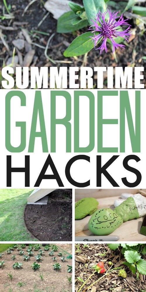 How many times have you vowed to 'do better next year' when it comes to gardening? Well, make 'next year' THIS year with these summertime garden hacks!