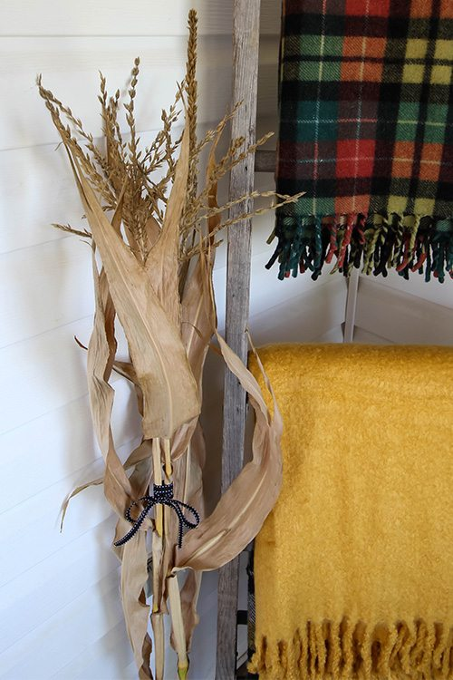 how to dry corn stalks for fall decor the creek line house
