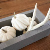 DIY Rustic Pumpkin Trough Centerpiece