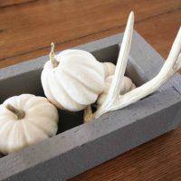 DIY Rustic Pumpkin Trough Centerpiece