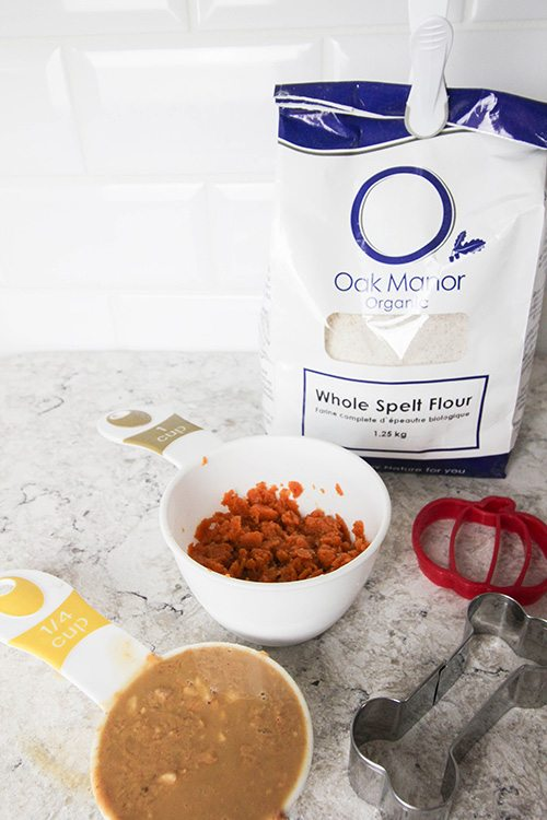 Three ingredient DIY pumpkin peanut butter dog treats!