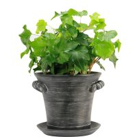 Farmhouse Style Flower Pots and Planters Under $25