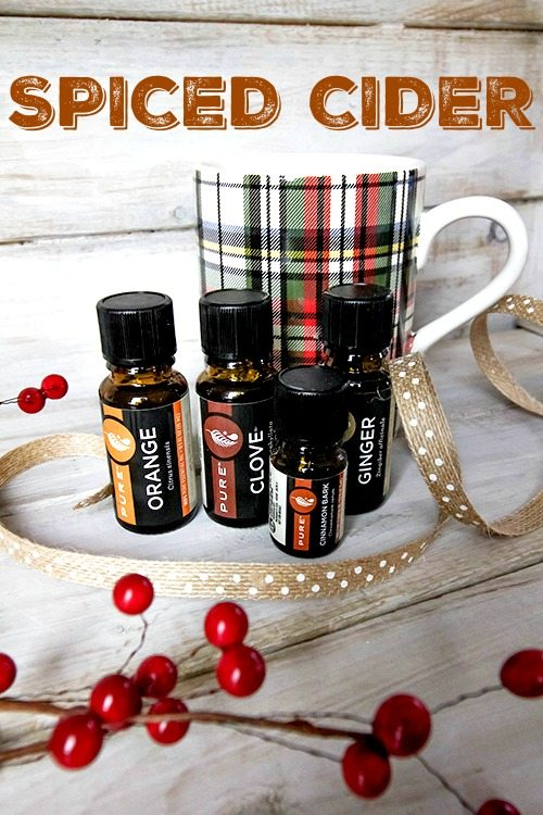 Use these Christmas Essential Oil Diffuser Recipes to create a holly jolly atmosphere in your home this Christmas season!