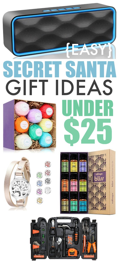 Secret Santa Gift Ideas Under $25 for Everyone on your List!