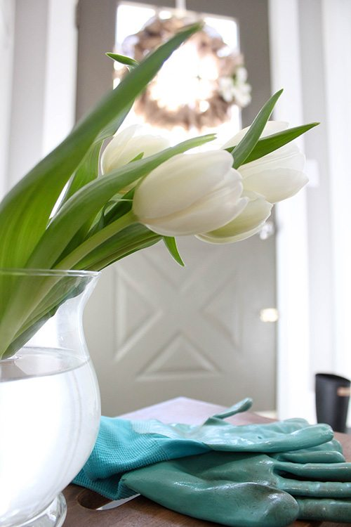 Welcome to this year's spring home tour! Be sure to check out the links to all of the other beautiful homes in the Canadian Bloggers Home Tour when you get to the end of this post!