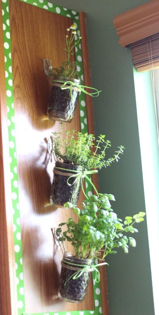 Uses for Command Hooks - Indoor herb garden