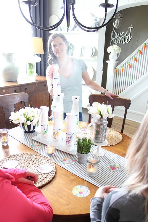 We all face odor problems in our homes, but it can be hard to find a practical solution if you're someone who finds heavily-scented products overwhelming. Here are some of my favourite tips for a fresh smelling home without using strong scents!