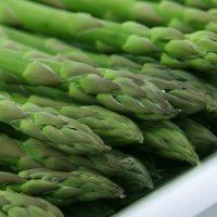 How to Plant Asparagus