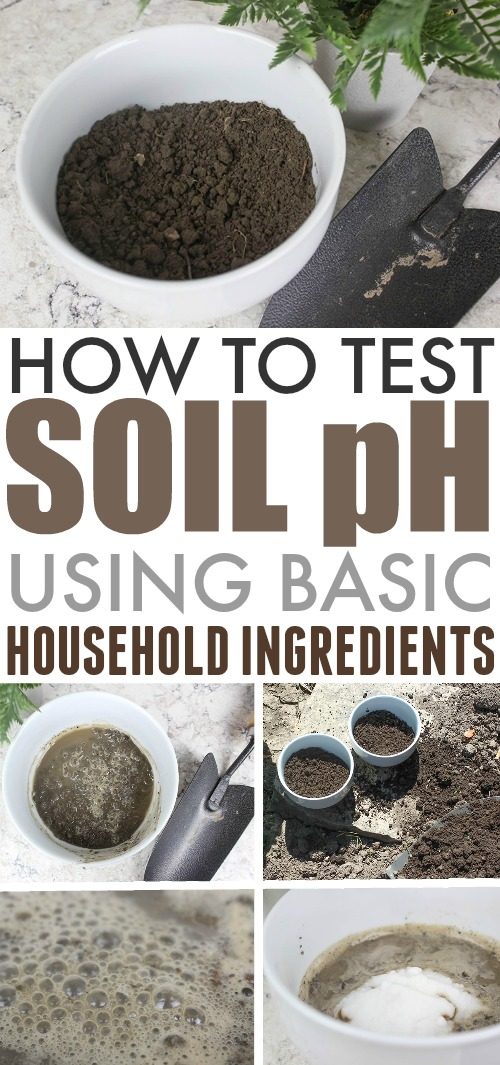 How to test soil ph levels the creek line house for The soil the soil