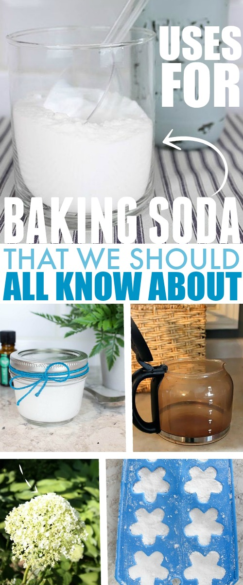 I just can't seem to stop myself from finding more and more uses for baking soda! If ever there was ever any doubt that you should always keep a box -or ten- in the house, this list should put that to rest! Enjoy this list of baking soda uses!