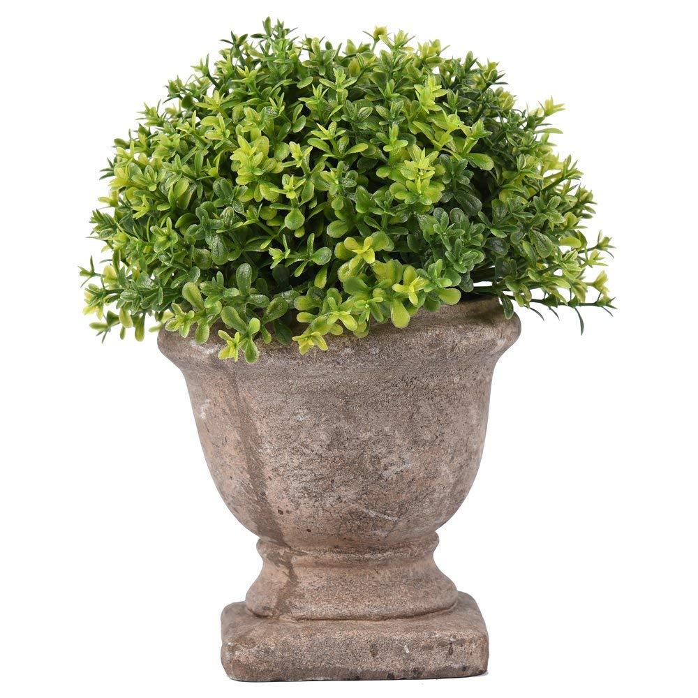 Farmhouse Style Topiary Decor Under $25!