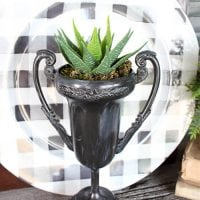 Dollar Store Trophy Planter