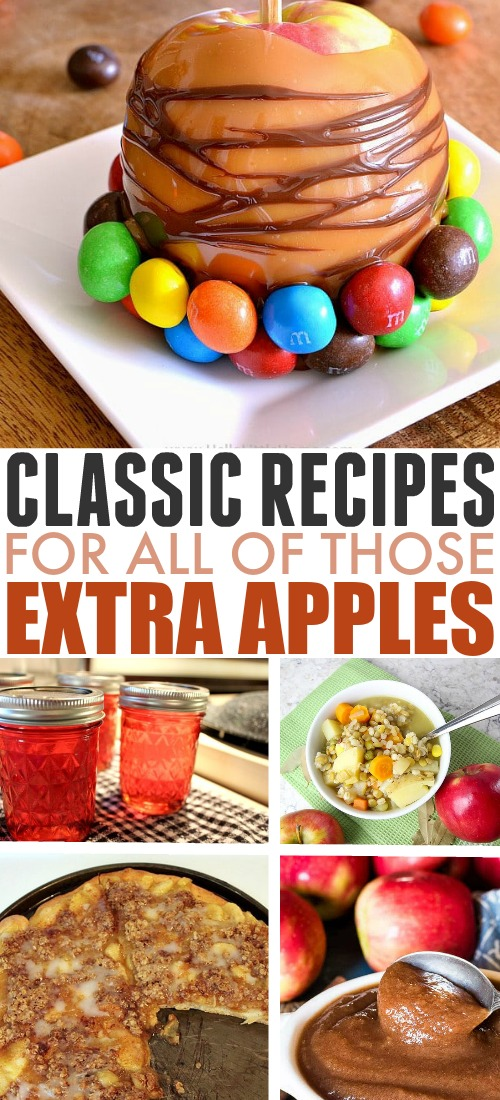 If you have a bunch of extra apples on your hands (and who doesn't at this time of year?), this collection of recipes will see you through apple season and beyond!
