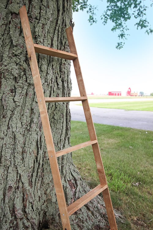 This mini DIY farmhouse ladder is the perfect thing to bring a little farmhouse style to any area of your home or your porch. A great DIY project for fall decorating!