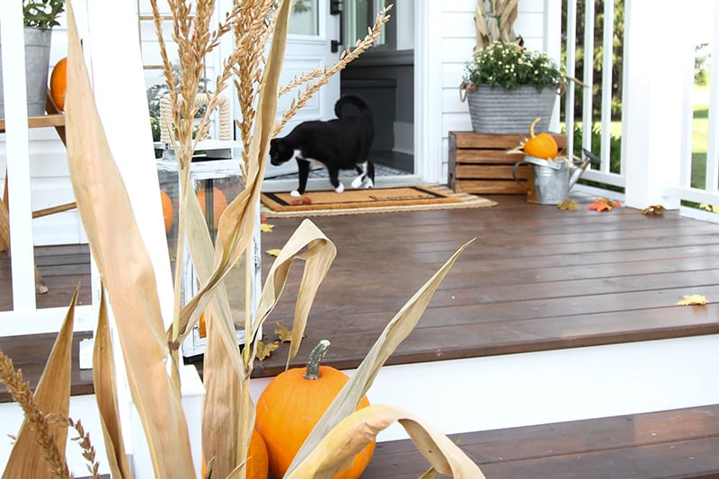 Today I'll be sharing some fun fall entryway decor ideas featuring our new side porch and mud room! Be sure to visit the other homes on the tour as well!