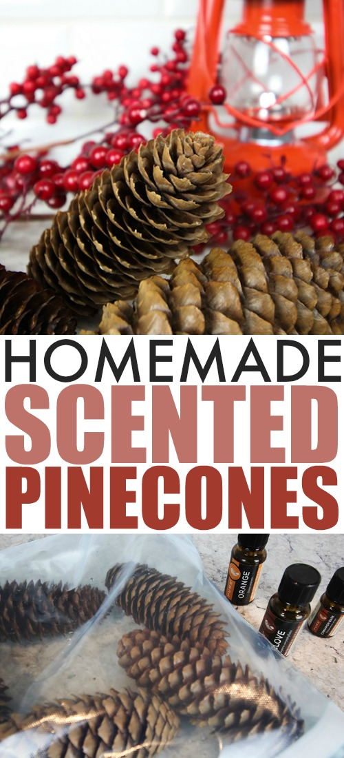These DIY scented pinecones are a great, festive way to freshen your air during the colder months. They make a fun little gift idea too!