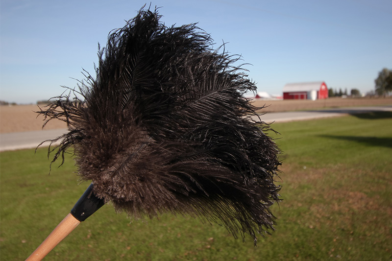 A good feather duster can be your best friend if you want to keep your home clean without much effort at all. Here's how to properly use a feather duster.