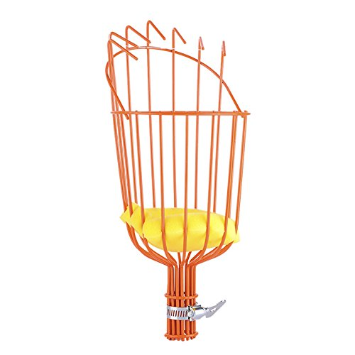 Fun and Practical Gift Ideas for Veggie Gardeners!  Fruit Picker Harvest Tool with Basket Head