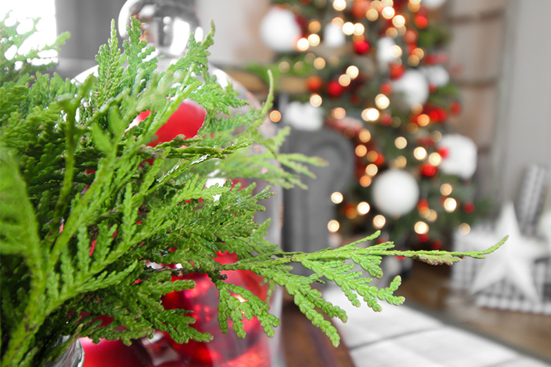 Try a few of these simple Christmas tree decorating tricks to make your tree look more polished and pulled-together this year. Anyone can have a tree that looks professionally-decorated with these easy, inexpensive tips!