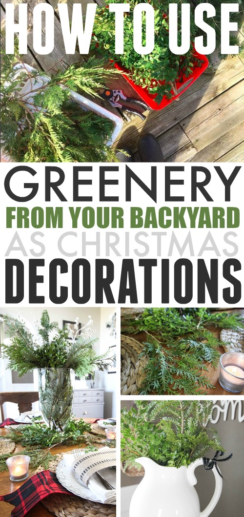 DIY Christmas Basics - How to Decorate With Greenery You Gather From Your Backyard.